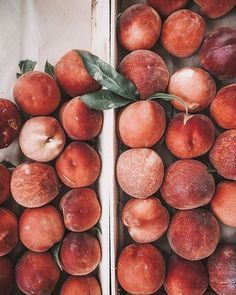 Life is peachy! 🍑 I actually love fruit in the summer, and a peach is one of my favorites. What is your favorite fruit? High Fiber Vegetables, High Fiber Fruits, Fiber For Kids, Good Food, Yummy Food, Food Styling, Cravings, Smoothies, Gastronomia