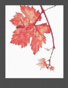Autumn Maple Leaf Cross Stitch Pattern No385 Free Shipping PDF