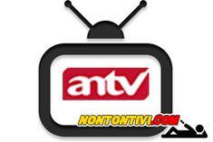 mivo tv indonesia live online free