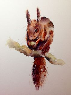 """Red squirrel """"Tufty"""" painting by watercolour artist Jane Davies available as a LIMITED EDITION PRINT"""