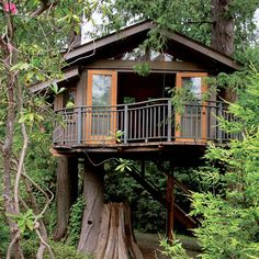 11 amazing treehouses
