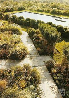 Molinia, eryngium, fennel, veronicastrum, echinacea, and grasses