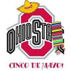 75 Best Buckeyes Images In 2013 Buckeye Nut Ohio State