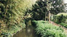 Claude Monet, Country Roads, River, Gallery, Garden, Outdoor, Bonjour, Outdoors, Garten