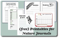 "Read her ""The Minimalist Guide to Nature Notebooking"" article and enjoy free printables for your nature journals."