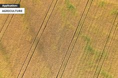 A valuable guide to the key applications of professional senseFly drones. Drones, Agriculture, Civilization, Parrot, Parrot Bird, Parrots