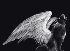 Pics For > Wolf With Wings Drawing