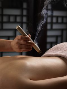 In Traditional Chinese Medicine (TCM), moxibustion is derived from the mugwort herb, in which it is dried, rolled, and burned, similarly as an incense would be burned and then applied either directly or indirectly; both of which will be explained further within this context. Moxibustion is used for its warming capabilities in which it drives out the cold from the body. Its bitter and acrid nature also relieves stagnation (inhibition of proper flow of blood and energy).