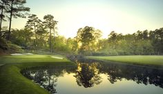VIP Access The Masters | Hotel | Package | Ticket | Golf | Augusta | National | The Ritz-Carlton | PGA | All Inclusive Resort | Luxury | Group Discount | Event | Packages  For Details Contact http://taylormadetravel.agentarc.com  taylormadetravel142@gmail.com  call 828-475-6227