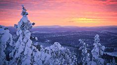 Finlande, Laponie, neige d'hiver, forêt, coucher de soleil, ciel Fonds d'écran - 1920x1080 Full HD