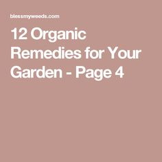 12 Organic Remedies for Your Garden - Page 4