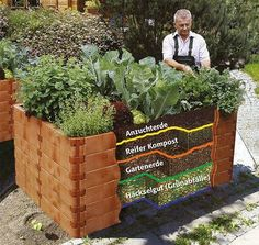 Newest Screen Raised Garden Beds backyard Concepts Sure, that may be a bizarre headline. Yet indeed, when I first created the raised garden beds My spouse and i . Raised Vegetable Gardens, Raised Garden Beds, Raised Beds, Herb Garden Design, Vegetable Garden Design, Herbs Garden, Diy Garden, Terrace Garden, Indoor Garden