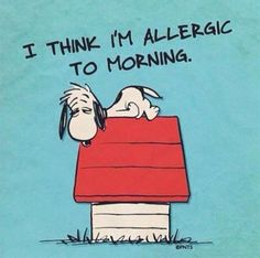 I Think I'm Allergic To Morning =) #snoopy #morninginspiration