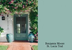 painted front doors/ ben moore /st. lucia teal