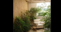 jardins-de-inverno-1367632307365_956x500.jpg (956×500)