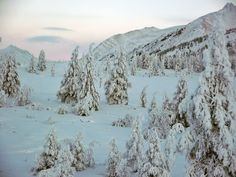 During 27 years of exploring the world, i have never ever come across such scenery and landscapes of winter such the one in Yakutia!It is the best of the best the world has to offer!