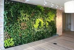 The Original Living Wall Brand: Providing many of the leading green wall systems to bring vegetation to any interior and exterior surface. Vertical Planting, Vertical Garden Wall, Vertical Gardens, Real Plants, Live Plants, Outside Decorations, Moss Wall, Flower Landscape, Hardy Plants