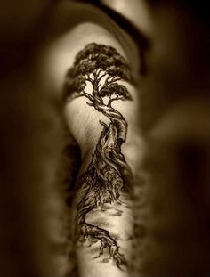 Trees have long been the symbol of life which are recorded in many of folklore cultures and fictions. Tree tattoos create effects of mystical fantasy on human bodies. Trees invite …: