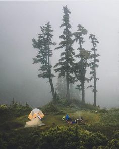 Camping in the fog #camplife