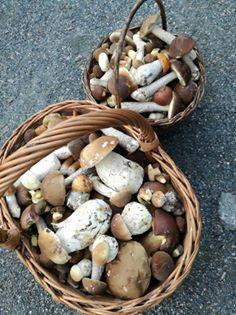 Stuffed Mushrooms, Beans, Vegetables, Food, Meal, Beans Recipes, Essen, Vegetable Recipes, Hoods