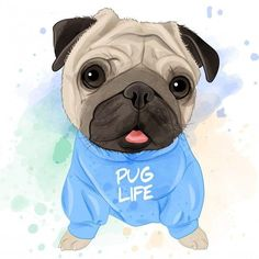 Very Cute Dogs, Cute Little Puppies, Pug Life, Pug Pictures, Animal Pictures, Pug Art, Cat Tunnel, Bear Wallpaper, Fish Cat Toy