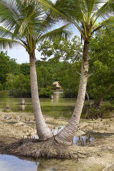 Santa Cruz Islands, Solomon Islands