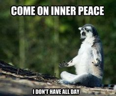 Who Has Time For Inner Peace? - www.yogalifedaily... #yogaquote #yoga #meditation