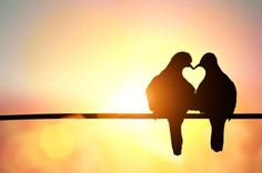 People have proven time and again that monogamy is, if not natural, then at least unrealistic for ho... - Shutterstock
