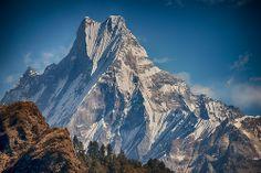 Machapuchare mountain, Annapurna, Nepal