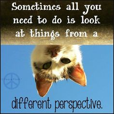 When you get caught up in the day-to-day of life, do you remember to look at things from a different perspective?