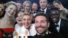 #cats #neko #selfie #oscars2014 #oscars