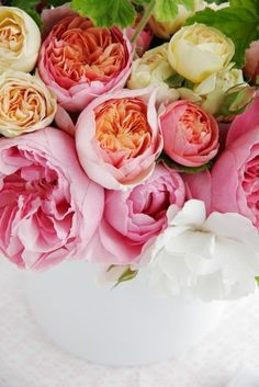 David Austin Roses they were in my wedding bouquet! My Flower, Fresh Flowers, Beautiful Flowers, Pretty Roses, Pink Flowers, Pink Roses, Cactus Flower, Exotic Flowers, Simply Beautiful