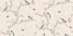 Phoebe Cream (98082) - Albany Wallpapers - An all over, trailing wallpaper design featuring trailing tree branches with vibrant coloured birds, flowers and butterflies. Shown here in various colours on a warm deep cream beige background. Other colourways are available. Please request a sample for a true colour match.