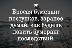 13319690_1155088561209744_8410439567286404663_n.png (480×318)