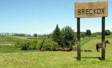 Beautiful day at Breckon Farms