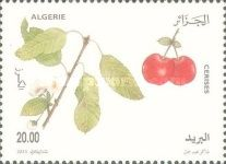 [Fruit Production, type BBZ]