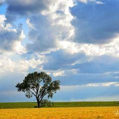 Taken in South Dakota