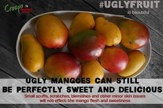 Blemished is Beautiful, On the Inside Being Ugly, Pear, The Selection, Mango, Organic, Canning, Fruit, Storage, Sweet
