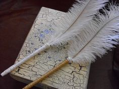 Feather Pens, Ostrich Feather Pens, Set of 2, for your Wedding Guest Book, Vintage Wedding TOP SELLER