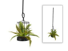 An old cage re-purposed as a planter for a fern. Found in TSR Category 'Sims 4 Plants' Les Sims 4 Pc, Sims Four, Sims 4 Tsr, Sims Cc, Sims 4 Cc Furniture Living Rooms, Muebles Sims 4 Cc, Sims 4 Bedroom, Sims 4 House Design, Sims 4 Clutter