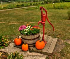 An old hand water pump at McWhorter's Orchard in Argyle, NY is decorated for fall. Water Garden, Lawn And Garden, Garden Pots, Moss Garden, Garden Deco, Well Pump Cover, Septic Tank Covers, Old Water Pumps, Water Fountain Pumps