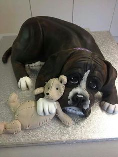 Amazing boxer dog cake Mini Tortillas, Unique Cakes, Creative Cakes, Fancy Cakes, Cute Cakes, Dog Cakes, Cupcake Cakes, Dog Themed Parties, Realistic Cakes