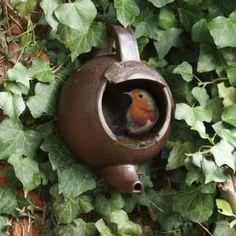 * Nestkastjes die in het najaar nog niet werden ophangen moeten nu wel dringend de tuin in, zodat de vogels er kunnen aan wennen vooraleer het broedseizoen begint. Hang de nestkasten op met de opening naar het oosten of het noordoosten.