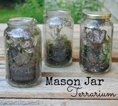 #DIY: Mason Jar Terrarium tutorial.  Such a fun & easy idea to plant with your kids, plus they can be displayed indoors or outdoors.  Check out this DIY idea @ www.sasinteriors.net