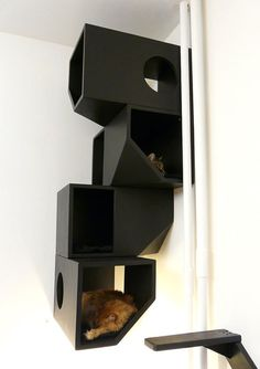 Floating Modular Cat House - I just love this, my kitties will love this