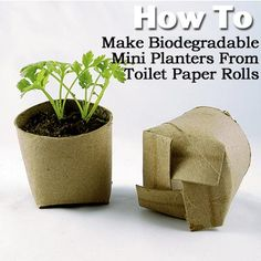 "If you plan on starting your own vegetable and flower seeds, you can get a little more mileage out of that toilet paper roll. Make yourself a ""mini-planter"" that you can plant pot and all! Make this biodegradable mini-planter out of scissors and a toilet paper roll"