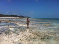 Tanzania - Solitary bather