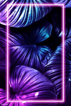 Whats Wallpaper, Neon Light Wallpaper, Iphone Wallpaper Photos, Framed Wallpaper, Phone Screen Wallpaper, Flower Phone Wallpaper, Iphone Background Wallpaper, Aesthetic Iphone Wallpaper, Galaxy Wallpaper