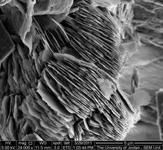 Kaolinite books Kaolin clay sheets Courtesy of wadah mahmoud Image Details Instrument used: Inspect Family Magnification: 24000 Horizontal Field Width: 5 micron Voltage: 5kv Spot: 3 Working Distance: 11.5 Detector: SE