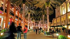 West Palm Beach Seo